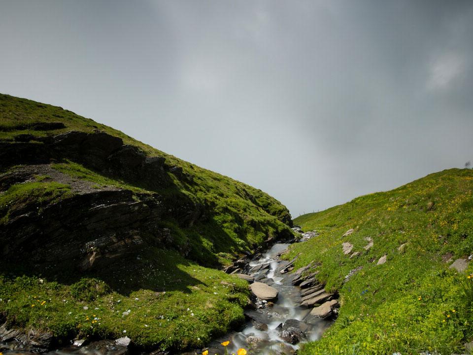 Ein Bach verläuft über eine grüne Wiese in der Nähe des Bodmi Romantikhotel in Grindelwald