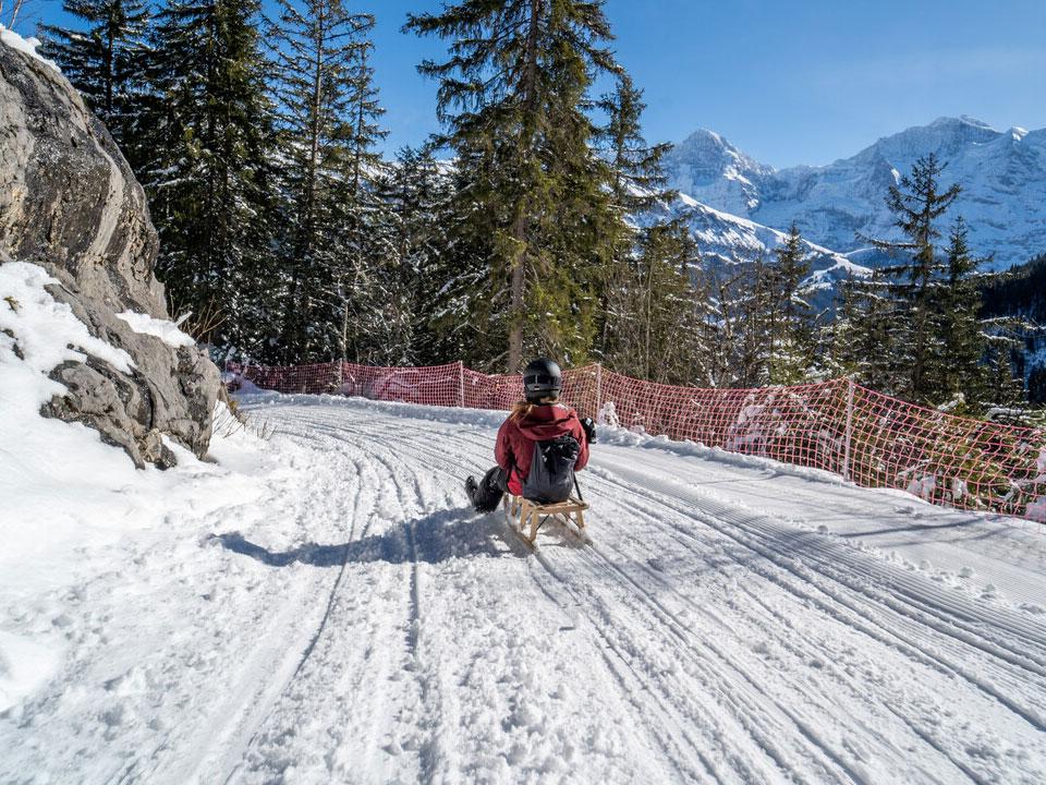 Eine junge Frau in Skibekleidung beim Schlittenfahren auf einem verschneiten Weg in Grindelwald
