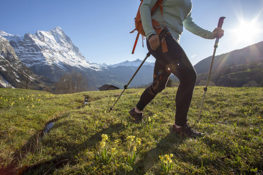 A person taking a hike on a grassy hill, in front of snow covered mountains, as a part of the special activities in Grindelwald, that can be booked through our arrangements
